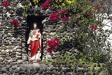 Christ Statue and Bougainvillea,Sacred Heart Catholic Church, Avarua, Rarotonga, Cook Islands