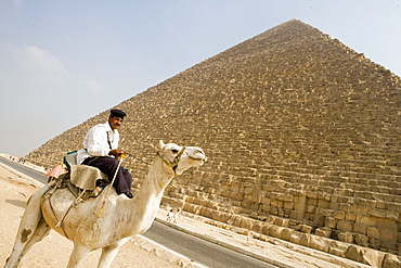 Tourist Police on Camel, Pyramids of Giza, Cairo, Eqypt