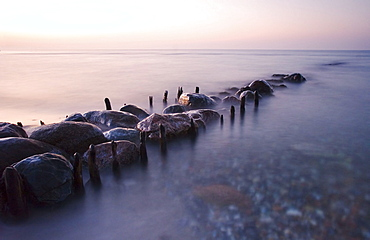 Leavings of a groyne and stones, coastline of Baltic Sea, Schleswig-Holstein, Germany