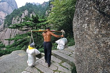 porter carrys building material on his back up steep mountain steps, Taoist mountain, Hua Shan, Shaanxi province, Taoist mountain, China, Asia