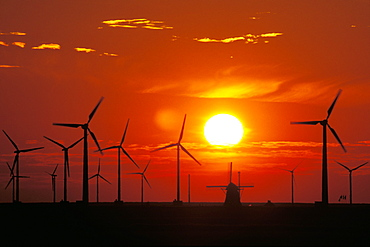 Wind Turbines and old windmill at sunset, North Sea, Netherlands