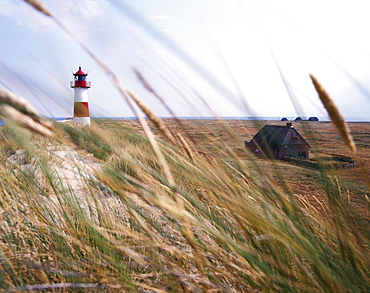 Lighthouse and barrier dunes, near List, Westerland, Sylt Island, Germany