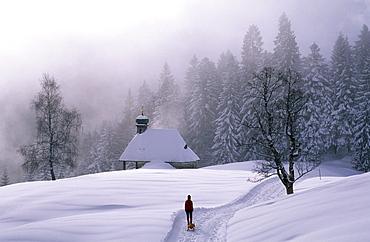 Sledging at Lustenauer Huette, Schwarzenberg, Bregenzer Wald, Vorarlberg, Austria