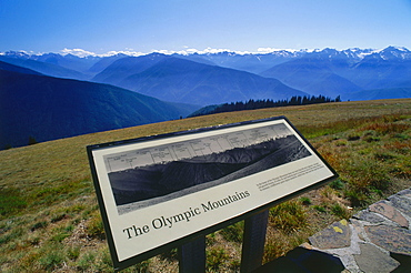 Olympic Mountains seen from Hurricane Ridge, Olympic National Park, Washington, USA