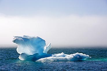 Iceberg at Narsarsuaq, South Greenland