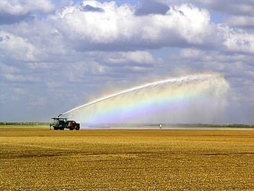 Field being irrigated, Farmground near Miami, Florida, USA