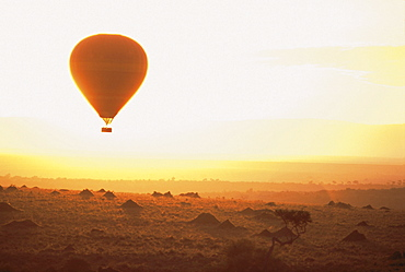 Hot air balloon above Masai Mara National Reserve at sunset, Kenia, Africa