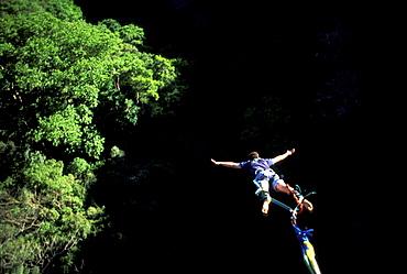A man Bungee Jumping in the jungle, Costa Rica, Caribbean, America
