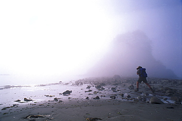 Man hiking on water shore, Cape Alave, Olympic NP, Washington, USA