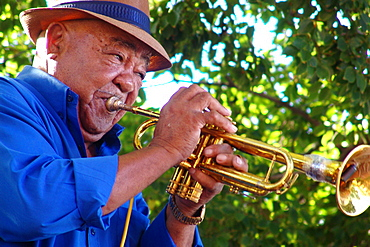 Old man playing the trumpet, Cape Town, South Africa, Africa