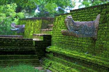 Mossy temple complex with sculptures, Kiri Vihhara, Polonnaruwa, North Central Province, Sri Lanka, Asia