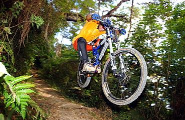 Man riding a mountain bike through the jungle, Cuba, America