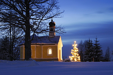 Little chapel with christmastree at dusk, Upper Bavaria, Germany