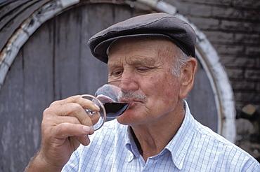 Sr. Valduga, Valduga Wineyard, Bento Goncalves Serra Gaucha, Rio Grande Do Sul Brasil