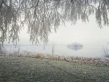 Frost covered landscape, Staffelsee, Upper Bavaria, Germany