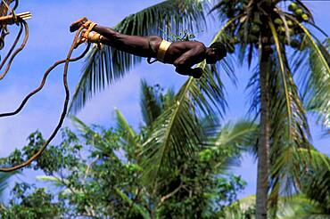 Local man bungee jumping from a platform, ritual, Vanuatu, Polynesia, Asia