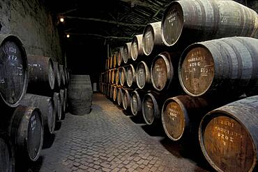 View at wooden barrels with port wine, Porto, Portugal, Europe