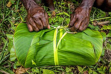 Packaging from leaves, Malekula, Vanuatu, South Pacific, Oceania