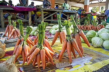 Carrots on market in Tanna, Vanuatu, South Pacific, Oceania