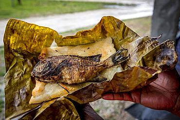 Grilled fish on Laplap, Efate, Vanuatu, South Pacific, Oceania