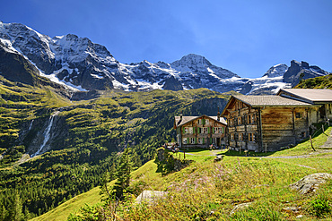 Almsiedlung Obersteinberg with Großhorn, Breithorn and Tschingelhorn in the background, Obersteinberg, Bernese Oberland, UNESCO World Natural Heritage Swiss Alps Jungfrau-Aletsch, Bernese Alps, Bern, Switzerland