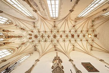 Cross vault of the nave, Blaubeuren monastery, Alb-Donau district, Baden-Württemberg, Germany