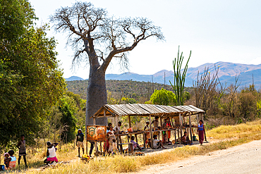 Sales booth for souvenirs on the road to Fort Dauphin, Southern Madagascar, Africa