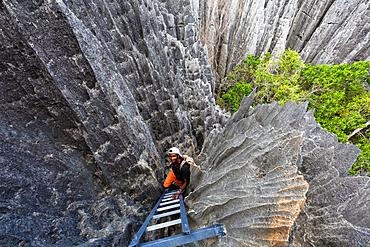 Madagasse in the karst landscape of Tsingy de Bemaraha, Tsingy-de-Bemaraha National Park, Mahajanga, Madagascar, Africa