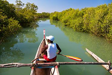 Boat tour in the mangroves near Morondava, Madagascar, Africa