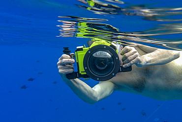 Underwater shot of man with Panasonic Lumix camera with underwater housing while snorkeling in the lagoon of Bora Bora, Bora Bora, Leeward Islands, French Polynesia, South Pacific