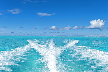 The waves of a speedboat in the turquoise waters of the Bora Bora Lagoon, Bora Bora, Leeward Islands, French Polynesia, South Pacific