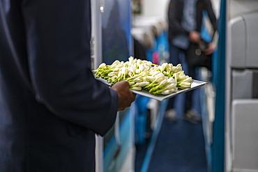 Flight attendants with tray of fresh Tahitian tiare flowers greeting passengers on board Air Tahiti Nui Boeing 787 Dreamliner airplane, Paris Charles de Gaulle Airport (CDG), near Paris, France