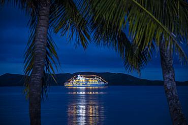 Coconut palms and cruise ship MV Reef Endeavor (Captain Cook Cruises Fiji) in roadstead at night, Gunu, Naviti Island, Yasawa Group, Fiji Islands, South Pacific