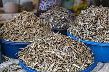Sambaza fish for sale at Kimironko Market, Kigali, Kigali Province, Rwanda, Africa