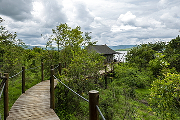 Wooden walkway leads to luxury tent accommodations at the luxury tented resort Magashi Camp (Wilderness Safaris), Akagera National Park, Eastern Province, Rwanda, Africa