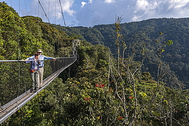 Couple admires view from suspension bridge of Canopy Walkway, Nyungwe Forest National Park, Western Province, Rwanda, Africa