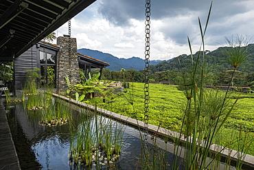 Luxury Resort One