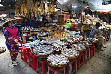 Fish for sale at Chau Doc Market, Chau Doc, An Giang, Vietnam, Asia