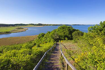 View over the Having to the Reddevitzer Höft peninsula, Ruegen, Baltic Sea, Mecklenburg-Western Pomerania, Germany