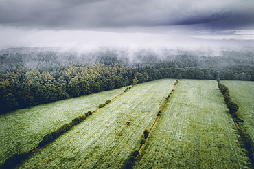 Fields and forest under fog and clouds, aerial view, Wiesede, Friedeburg, Wittmund, East Frisia, Lower Saxony, Germany, Europe