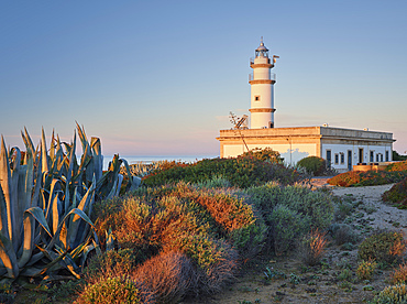 Faro des Cap de ses Salines, Mallorca, Balearic Islands, Catalonia, Spain