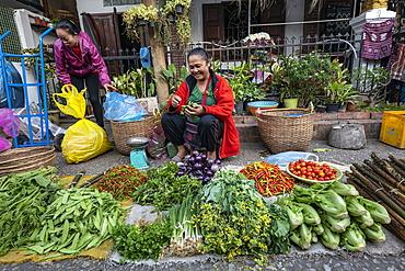 Women selling fruit and vegetables at the morning market, Luang Prabang, Luang Prabang Province, Laos, Asia