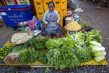 Woman sells fruits and vegetables at the morning market, Luang Prabang, Luang Prabang Province, Laos, Asia
