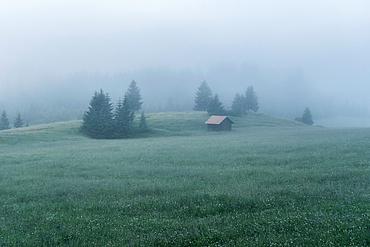 Hut in the fog, Loški Potok, Slovenia