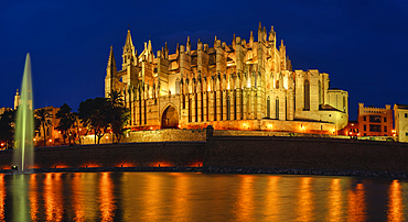La Seu Cathedral at the blue hour, Palma de Mallorca, Balearic Islands, Spain