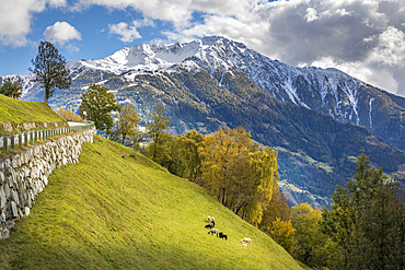 View from Zedlach to Iseltal with Rotenkogel (2,762 m), Virgental, East Tyrol, Tyrol, Austria