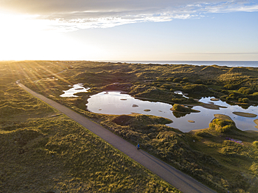 Aerial view of man on bicycle cycling on lakes and dunes along the North Sea coast at sunset, Midsland aan Zee, Terschelling, West Frisian Islands, Friesland, Netherlands, Europe