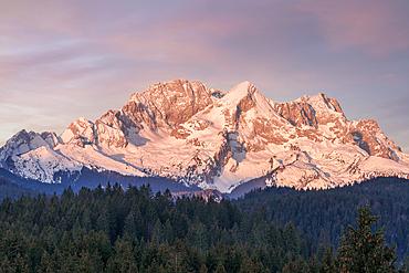 View from the Buckelwiesen near Krün towards the Zugspitz massif, Bavaria, Germany, Europe