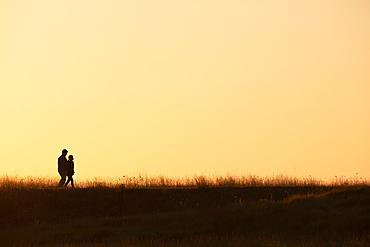 Walkers as silhouettes in the morning light go through the salt marshes at Mont Saint Michel, Normandy, France