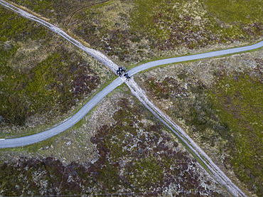 Aerial view of three people on horses on a field path that crosses a cycle path, near Oosterend, Terschelling, West Frisian Islands, Friesland, Netherlands, Europe